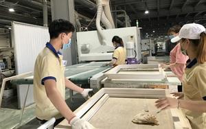 Vượt Trung Quốc, Việt Nam đang cung cấp lượng khổng lồ loại lâm sản này cho Mỹ