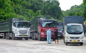 Lâm Đồng: Khởi tố vụ án thứ 2 liên quan đến tài xế lái xe làm lây lan dịch Covid-19