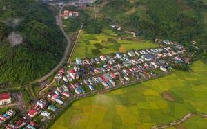 Lào Cai: Đẹp ngỡ ngàng mùa lúa chín vàng trong mây ở Mường Khương