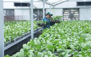 KH&CN góp phần đưa Việt Nam lọt top 15 xuất khẩu nông sản lớn trên thế giới