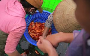 """Hy hữu: Phát hiện giấy đi đường của người bán cá mới """"8 tháng tuổi"""" ở Hà Nội"""