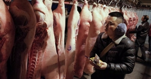 Năm 2022: Sản lượng thịt lợn của Trung Quốc sẽ giảm 14%