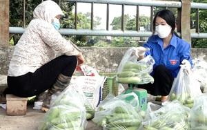 Hà Nội: Lập trăm tổ tiêu thụ nông sản, dân yên tâm sản xuất trong mùa dịch Covid-19