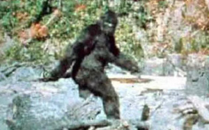 Người đàn ông hãi hùng nhớ lại cuộc săn đuổi với quái vật Bigfoot cao gần 2m5