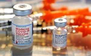 """Vaccine Covid-19 đưa các hãng dược Pfizer, Moderna bước ra """"ánh sáng"""""""