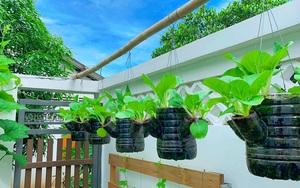 Muôn cách tái chế dụng cụ trồng rau, vừa giải trí vừa có thực phẩm sạch giữa mùa dịch