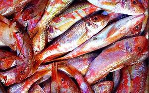 Loại cá tên nghe kỳ cục lại có màu hồng mộng mơ là đặc sản ngon ngọt thịt rất được ưa chuộng ở Quảng Ninh