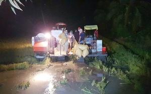 Cà Mau: Trắng đêm thu hoạch lúa hè thu né thời tiết xấu