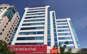 6 tháng đầu năm: Agribank hoạt động an toàn, hiệu quả, tích cực hỗ trợ khách hàng và nền kinh tế