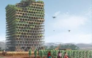 5 cách trang trại thông minh có thể nuôi 9,7 tỷ người vào năm 2050