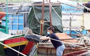 Clip - Ảnh: Ngư dân Hà Tĩnh hối hả đưa tàu thuyền về bờ tránh bão Conson