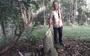 Thái Nguyên: Dấu tích ngôi chùa cổ hơn 300 năm trên đỉnh núi Cao Báng