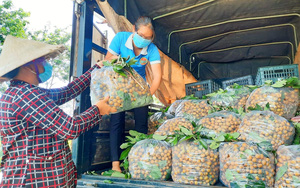 Doanh thu đặt hàng gói combo nông sản hơn 1 tỷ đồng/ngày nhưng chỉ giao được 30%