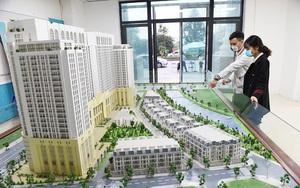 """Mua bán nhà đất 24h: 30 sàn môi giới hoạt động """"chui"""", cảnh báo mất tiền cọc mua căn hộ chưa đủ điều kiện"""