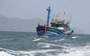 Đã liên lạc được với các tàu cá trên biển Đông