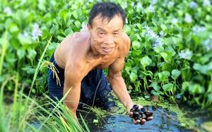 """Ninh Bình: Ông nông dân với thân hình """"cơ bắp"""" nuôi con siêu đẻ bán đắt tiền"""