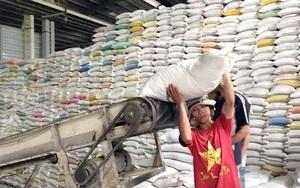 Giá gạo xuất khẩu Việt Nam thoát đáy tính từ 1,5 năm trở lại