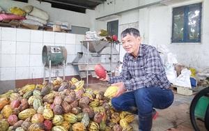 Có một thứ quý như vàng ở Việt Nam đang bị lẫn trong rác thải