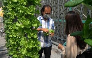 """""""Bắt trend"""" thế giới, nông dân Củ Chi xây nông trại thẳng đứng có một không hai tại Việt Nam"""
