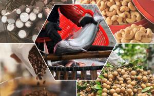Thị trường nông, lâm, thủy sản trong nước đầu tháng 9/2021 có gì đáng chú ý?