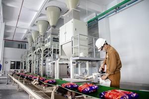 Lãi kỷ lục, Hóa chất Đức Giang (DGC) sắp M&A một doanh nghiệp phân bón?
