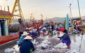 Quảng Ngãi: Nhiều nơi lúng túng vì lệnh dừng hoạt động tất cả các cảng, bến cá