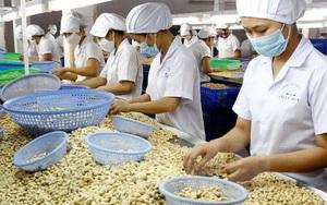 Đây là bí quyết để hạt điều Việt Nam khẳng định vị trí nhà cung cấp số 1 tại Nga