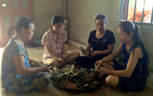Tuyên Quang: Vô rừng nhặt thứ củ đen đen đem về làm ra thứ bánh đặc sản gọi tên nhiều người bất ngờ