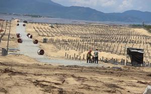 """Dự án """"tàn sát"""" 5,2 ha rừng: Huyện đề xuất xử phạt hành vi """"lấn chiếm"""" đất, tỉnh yêu cầu báo cáo chi tiết"""