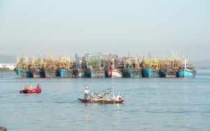 Quảng Nam: Nghề câu mực khơi đem lại thu nhập cao, giúp ngư dân vững tin vươn khơi bám biển