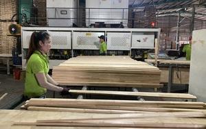 Nhu cầu mua sản phẩm này của Mỹ lên tới 100 tỷ USD, doanh nghiệp Việt Nam muốn tái sản xuất đón cơ hội