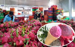 """Kem tươi làm từ trái thanh long lần đầu tiên """"trình làng"""" tại tỉnh Bình Thuận, bắt mắt, ngon miệng, mát ruột"""