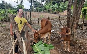 Kon Tum: Xôn xao việc hàng chục nông dân xã nghèo viết đơn xin ra khỏi danh sách hộ nghèo