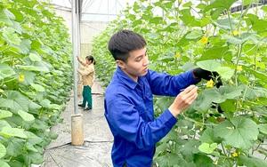 Chuyển đổi số - chìa khóa để phát triển nông nghiệp hiện đại