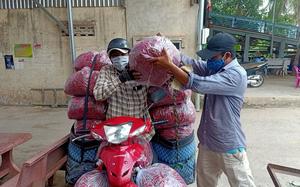 An Giang: Thứ trái ăn cay xé lưỡi tăng giá, nông dân mừng vì dịch Covid-19 như thế vẫn có người mua