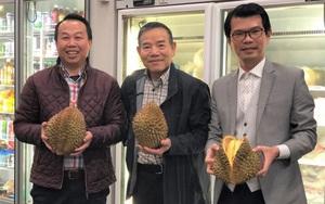 Ở nơi này, sầu riêng Ri6 của Việt Nam được ưa chuộng hơn cả sầu riêng Musang King