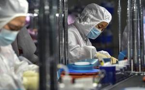 Nomura cắt giảm dự báo tăng trưởng GDP Trung Quốc nếu tình trạng hạn chế sử dụng điện kéo dài