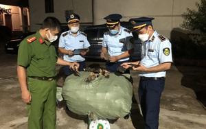 Hàng trăm kg nấm được tuồn phi pháp vào Việt Nam