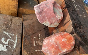 Buôn lậu gỗ và đá quý trị giá hơn 14 tỷ đồng từ Lào về Việt Nam
