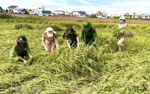 Ảnh: Công an Quảng Bình xuống đồng gặt lúa chở về tận nhà cho nông dân vùng phong tỏa