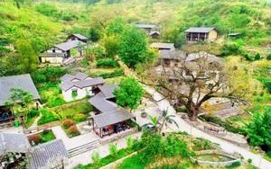 """Trào lưu lập làng sinh thái ven đô, đề phòng chiêu trò của """"cò đất"""""""