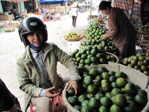 Giá rau quả đang tăng