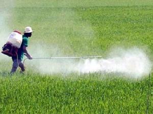 Tổng thống Emmanuel Marcon: Không thể cấm sử dụng glyphosate ở Pháp