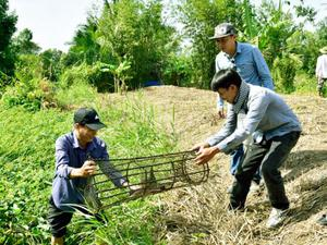 Kiên Giang: Tự hái rau dại, câu cá đồng, vô rừng U Minh đầy bí ẩn