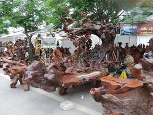 Mê mẩn bộ bàn ghế gỗ táu mật, giá nửa tỷ đồng của đại gia Hải Phòng