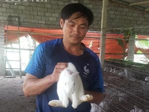Lạ mà hay: Trên nuôi thỏ dưới nuôi giun, tiền nhiều bất ngờ