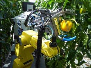 Không tin nổi: Siêu robot ''nông dân'' thu hoạch nông sản ấn tượng