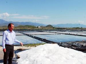 Làm muối, nuôi ốc hương thu về tiền tỷ nhờ Agribank tiếp vốn