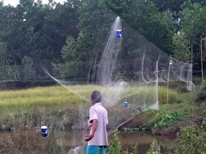 Đủ trò giăng bẫy, thảm sát chim trời kiểu tận diệt ở Quảng Ninh