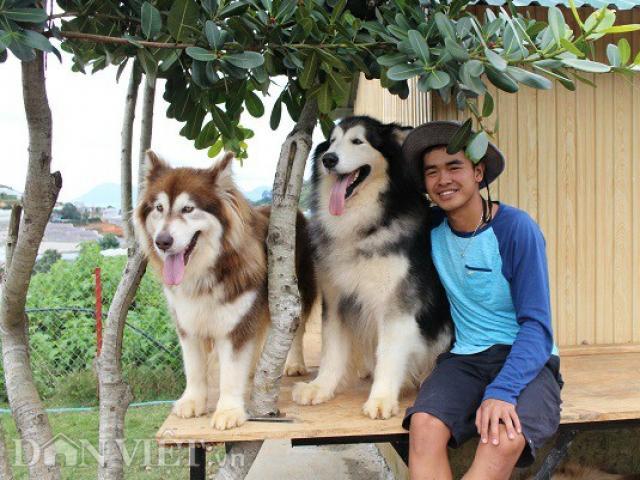 Mới 24 tuổi, 9X Đà Lạt đã sở hữu trang trại chó quý hàng tỷ đồng